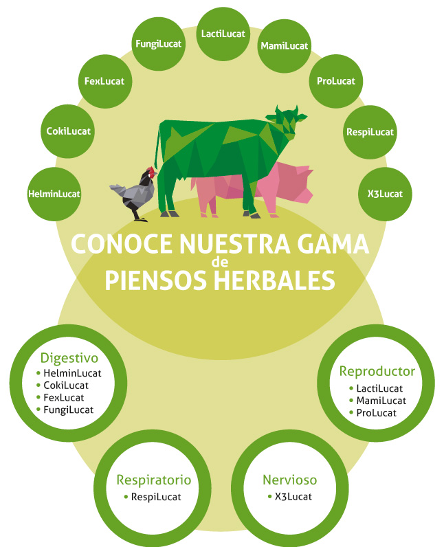 Gama-piensos-herbales-Herbalucat